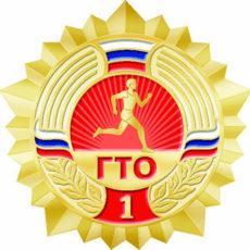 Выполняем комплекс упражнений на золотой значок ГТО